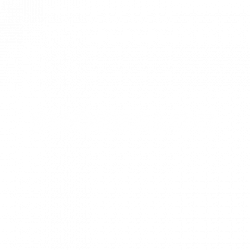 shoebaloo-wit